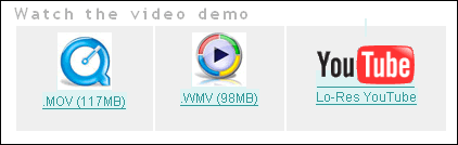Screen capture of the 'choose video format' interface from a web page, which has three options: Windows Media, QuickTime, and YouTube